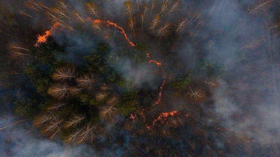 NASA показало пожары в Чернобыле (фото)